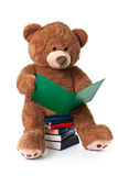 Reading bear with clipping path Stock Photos