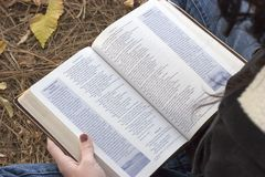 Reading Bible Stock Images