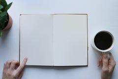 Reading a book, coffee break, informative reading Stock Photo