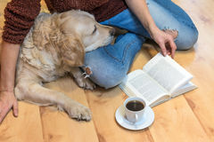 Reading book with the dog on the floor Royalty Free Stock Images