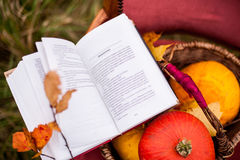 Reading book outdoors Royalty Free Stock Image
