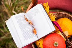 Reading book outdoors Stock Images