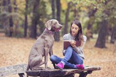 Reading a book in the park Royalty Free Stock Images