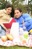 Reading Book On Picnic Trip Royalty Free Stock Photography