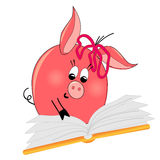 Reading book pig illustration. isolated character Royalty Free Stock Photos