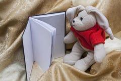 Reading Royalty Free Stock Image