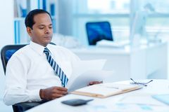 Reading business document Stock Image