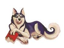Reading dog. Cartoon illustration with reading dog royalty free illustration