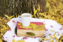 Reading and drinking coffee in the autumn park. Book with reading glasses ans yellow pumpkin in the autumn park royalty free stock photos