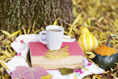 Reading and drinking coffee in the autumn park. Book with reading glasses ans yellow pumpkin in the autumn park stock photo
