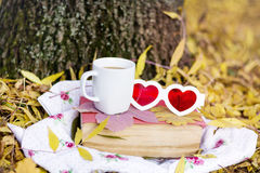 Reading and drinking coffee in the autumn park. Book with reading glasses ans yellow pumpkin in the autumn park royalty free stock image