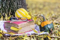 Reading and drinking coffee in the autumn park. Book with reading glasses ans yellow pumpkin in the autumn park royalty free stock images