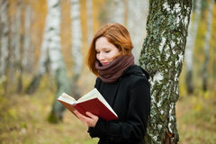 Reading In The Park Royalty Free Stock Images