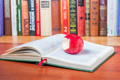 Reading interesting book Stock Photo