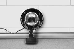 Reading lamp Stock Image