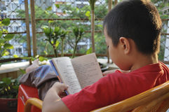 Reading, learning, read a Book. Child in the careful reading books Royalty Free Stock Photo