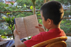 Reading, learning, read a Book. Child in the careful reading books Stock Images