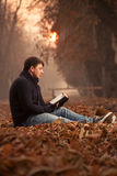 Reading in the leaves Royalty Free Stock Photos