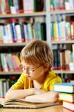 Reading in library. Portrait of cute schoolkid reading in the library royalty free stock photography