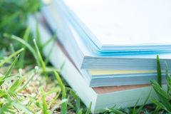 Reading on a meadow. Reading novel on a meadow Royalty Free Stock Image