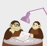 Reading Monkeys Stock Photos
