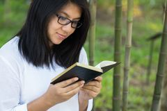 Reading in the park Royalty Free Stock Image