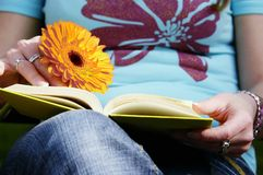 Reading a romantic book Royalty Free Stock Image