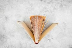 Reading and self-development. Ajar book on grey background top view copy space. Reading and self-development. Ajar book on grey background top view Royalty Free Stock Photography