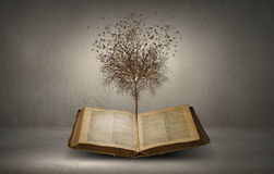 Reading and self education. Conceptual image with dry tree growing from book Stock Images