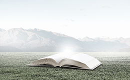 Reading and self education. Conceptual image with green tree growing from book Stock Image