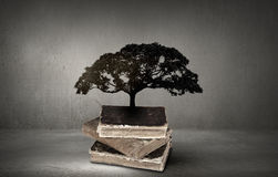 Reading and self education. Conceptual image with green tree growing from book Stock Photography