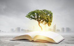 Reading and self education. Conceptual image with green tree growing from book Stock Photo