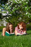 Reading students Royalty Free Stock Images