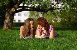 Reading students Stock Image