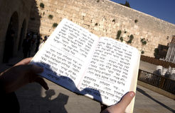 Reading the torah royalty free stock images