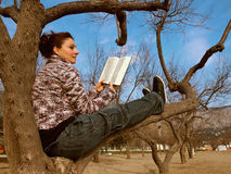 Reading in a tree Stock Photography