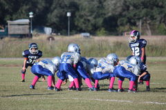 Ready for Action. The PeeWee Football Players Are Lined Up Against Each Other Ready To Run The Next Play Stock Image