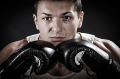 Ready for boxing Royalty Free Stock Photography