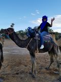 Ready for a Camel trek in Sahara to see the sunset! stock photos