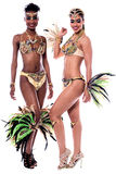We are ready for the carnival. Stock Images