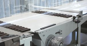 Ready chocolates on the production line at chocolate factory Manufacturing line of chocolate candy Sweet food on stock footage