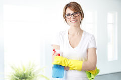 Ready for cleaning royalty free stock photos