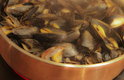 Ready for Dinner--Fresh Mussels Steaming in a Copper Skillet Stock Photos