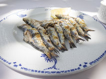 Ready espeto sardine dish Royalty Free Stock Photos