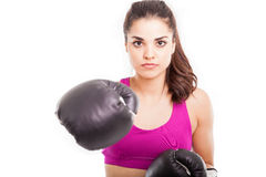 Ready for a fight? Stock Photos