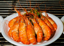 Ready food in the market in Thailand - boiled shrimps Stock Images