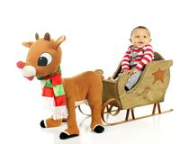 Free Ready For A Rudolph Ride Stock Images - 125379394