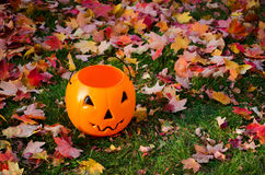 Ready for halloween Royalty Free Stock Photo