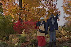 Ready for Halloween Royalty Free Stock Photos