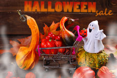 Ready for halloween Stock Image